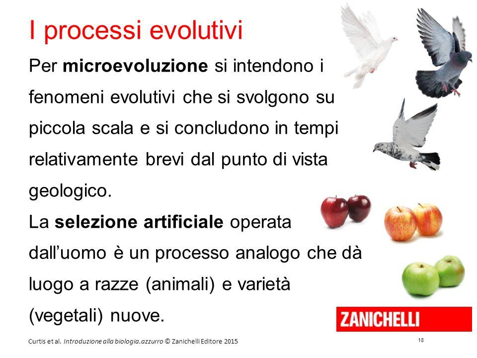 18 Curtis et al. Introduzione alla biologia.azzurro © Zanichelli Editore 2015 I processi evolutivi Per microevoluzione si intendono i fenomeni evoluti