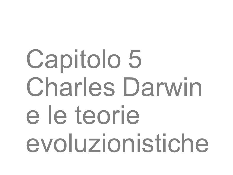 3 Capitolo 5 Charles Darwin e le teorie evoluzionistiche