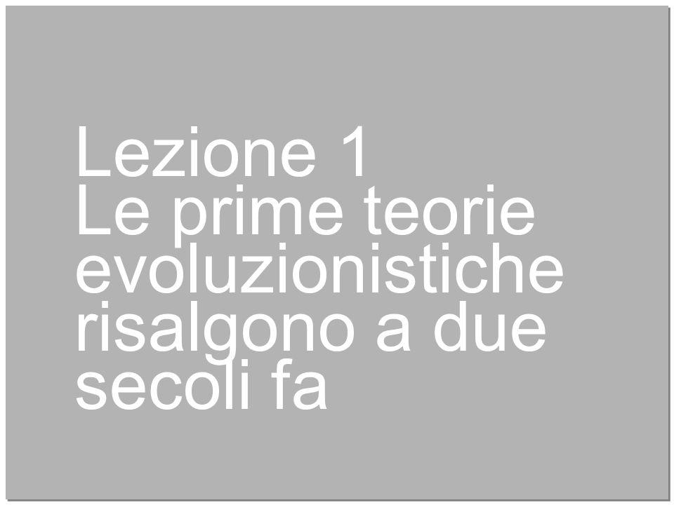 4 Lezione 1 Le prime teorie evoluzionistiche risalgono a due secoli fa