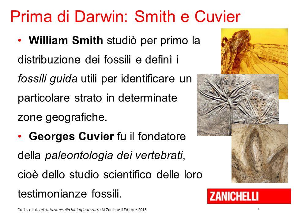 7 7 Curtis et al. Introduzione alla biologia.azzurro © Zanichelli Editore 2015 Prima di Darwin: Smith e Cuvier William Smith studiò per primo la distr