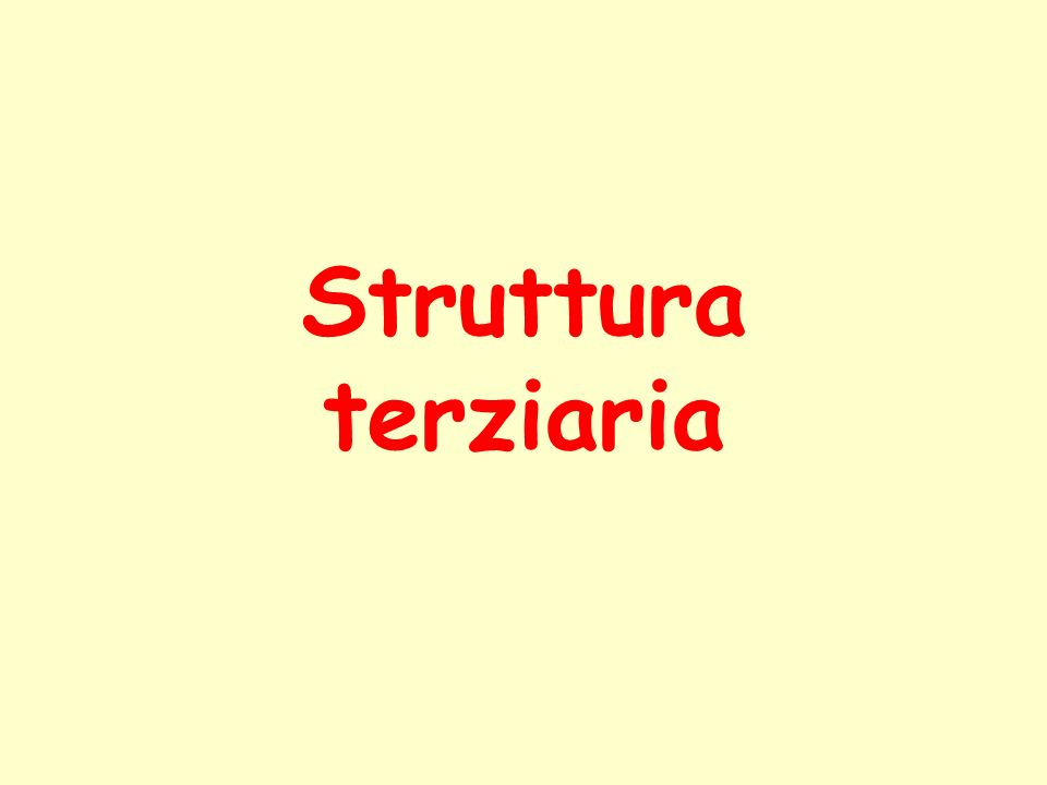 Struttura terziaria