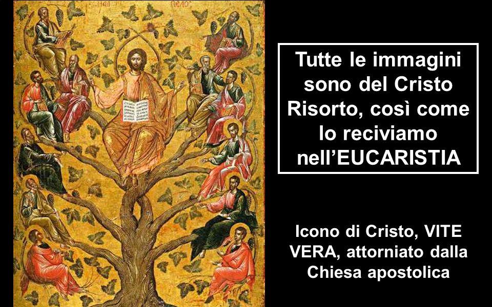 GESÙ VITA PASQUALE Oggi finisce la parte dottrinale sull'EUCARISTIA-dono-PASQUALE Ogni EUCARISTIA ci offre l'opportunità di mangiare la CARNE e il SAN