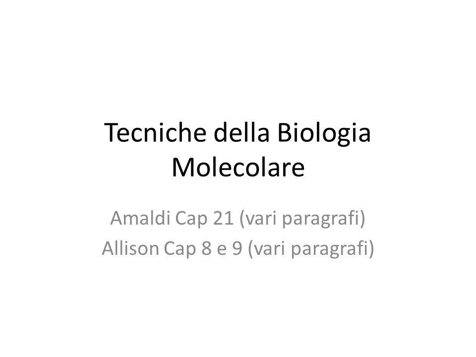 Tecniche della Biologia Molecolare Amaldi Cap 21 (vari paragrafi) Allison Cap 8 e 9 (vari paragrafi)