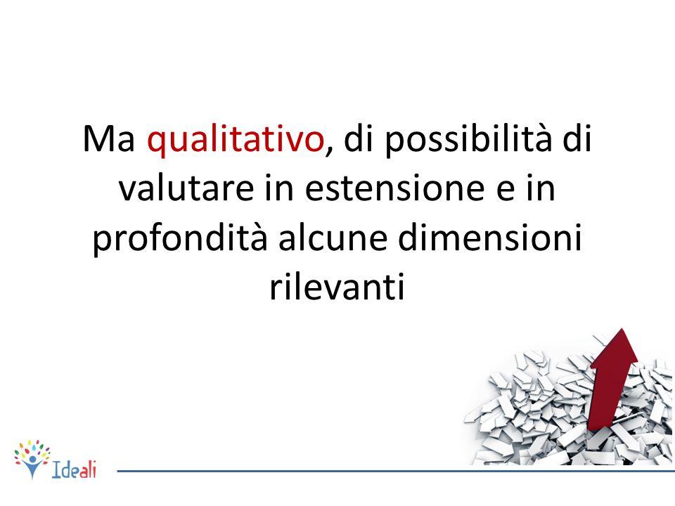 Ma qualitativo, di possibilità di valutare in estensione e in profondità alcune dimensioni rilevanti