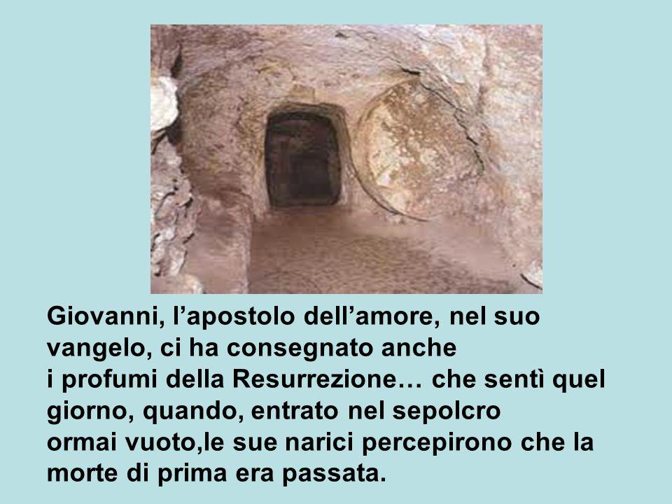 Giovanni, l'apostolo dell'amore, nel suo vangelo, ci ha consegnato anche i profumi della Resurrezione… che sentì quel giorno, quando, entrato nel sepolcro ormai vuoto,le sue narici percepirono che la morte di prima era passata.