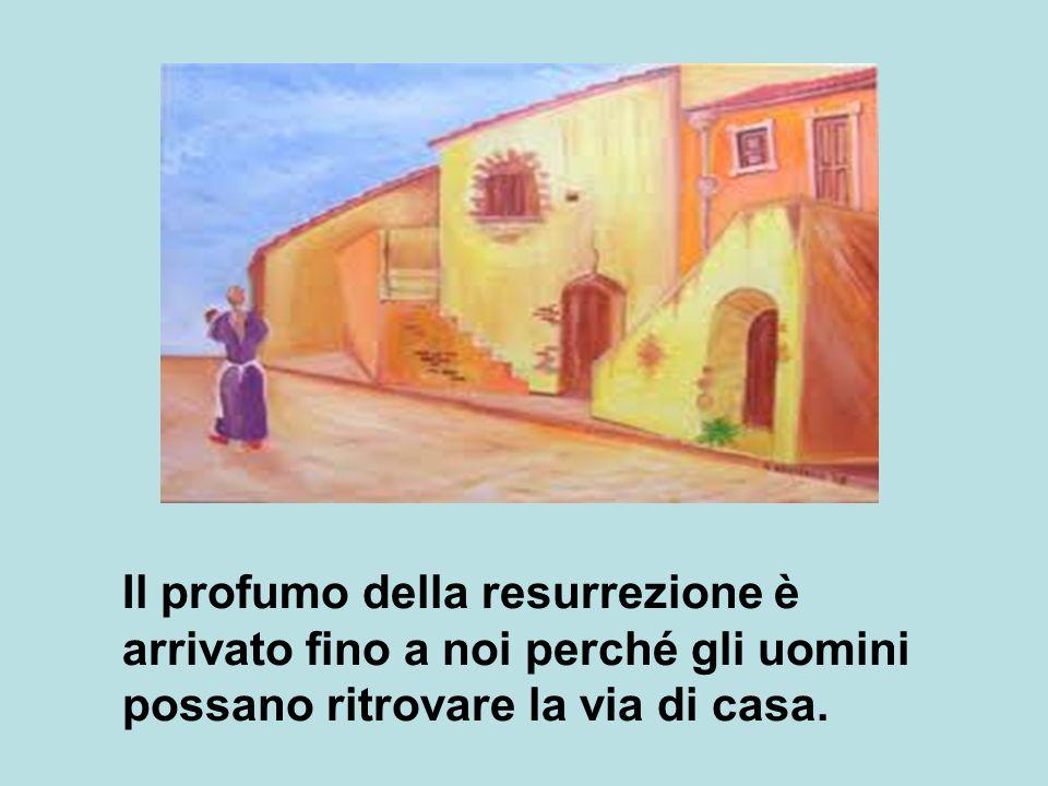Il profumo della resurrezione è arrivato fino a noi perché gli uomini possano ritrovare la via di casa.