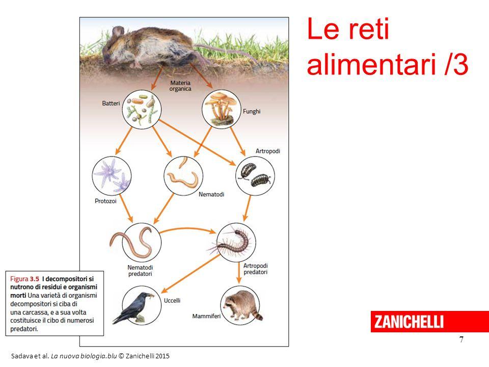 8 La composizione delle comunità La biodiversità è la varietà degli esseri viventi che popolano un determinato ambiente e viene valutata sulla base della ricchezza di specie e della loro abbondanza relativa.