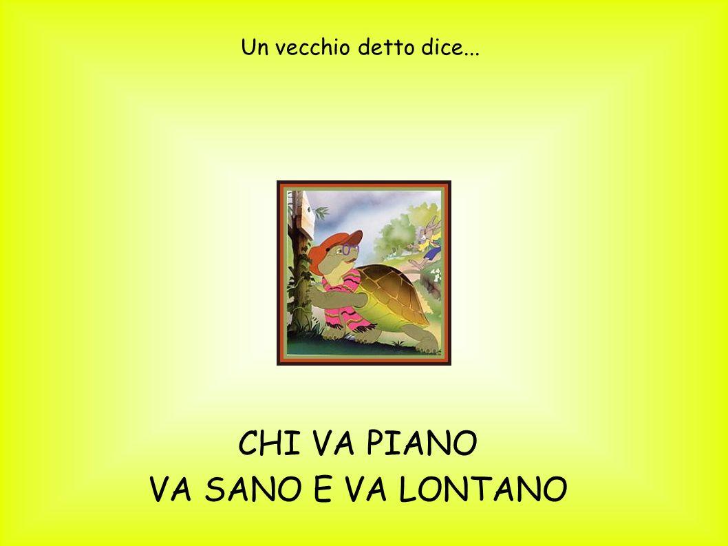 Un vecchio detto dice... CHI VA PIANO VA SANO E VA LONTANO