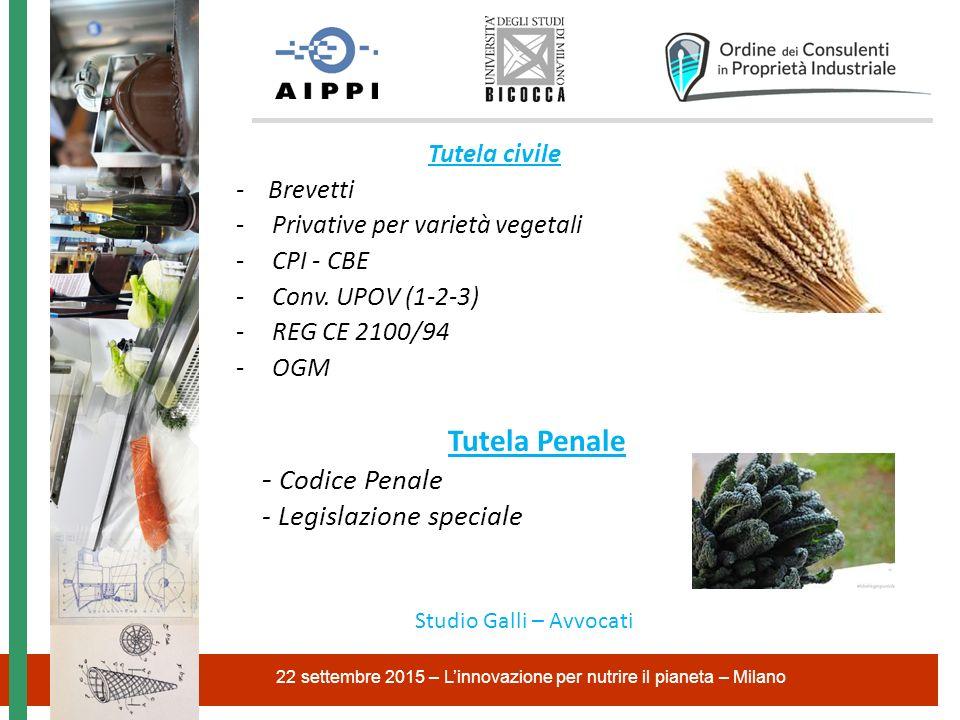 Tutela civile - Brevetti -Privative per varietà vegetali -CPI - CBE -Conv. UPOV (1-2-3) -REG CE 2100/94 -OGM 22 settembre 2015 – L'innovazione per nut