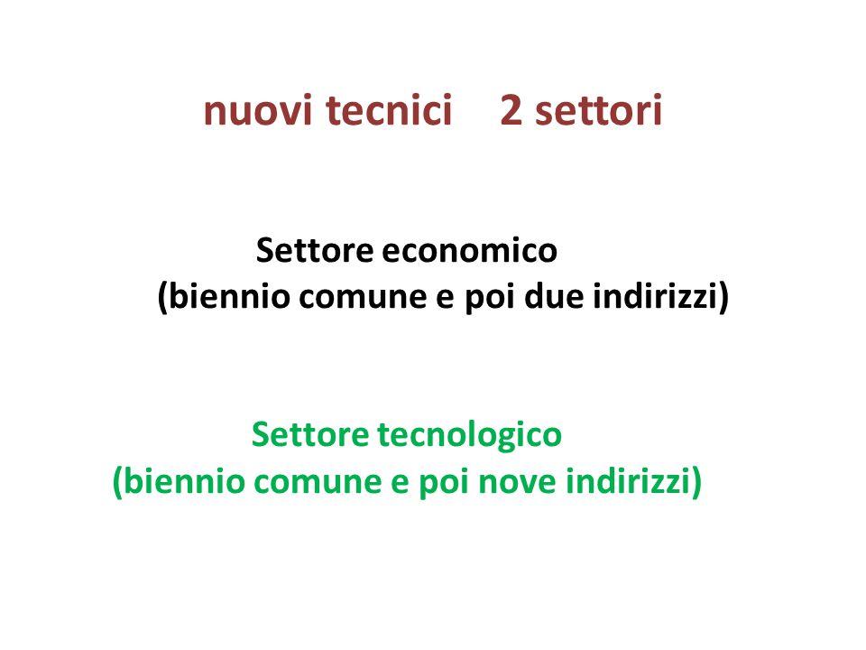 nuovi tecnici 2 settori Settore economico (biennio comune e poi due indirizzi) Settore tecnologico (biennio comune e poi nove indirizzi)