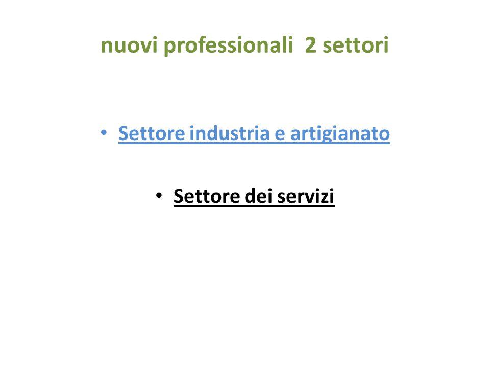nuovi professionali 2 settori Settore industria e artigianato Settore dei servizi