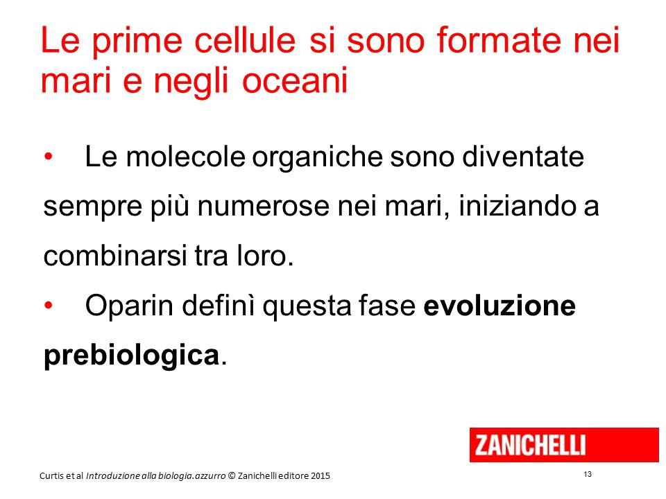 13 Curtis et al Introduzione alla biologia.azzurro © Zanichelli editore 2015 Le prime cellule si sono formate nei mari e negli oceani Le molecole orga