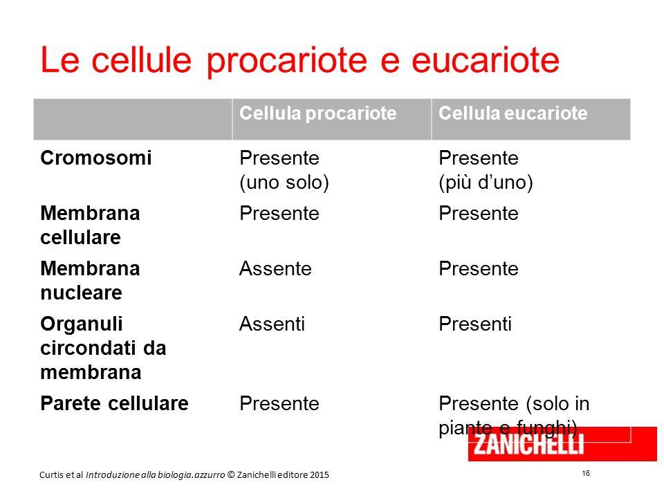 16 Curtis et al Introduzione alla biologia.azzurro © Zanichelli editore 2015 Le cellule procariote e eucariote Cellula procarioteCellula eucariote Cro