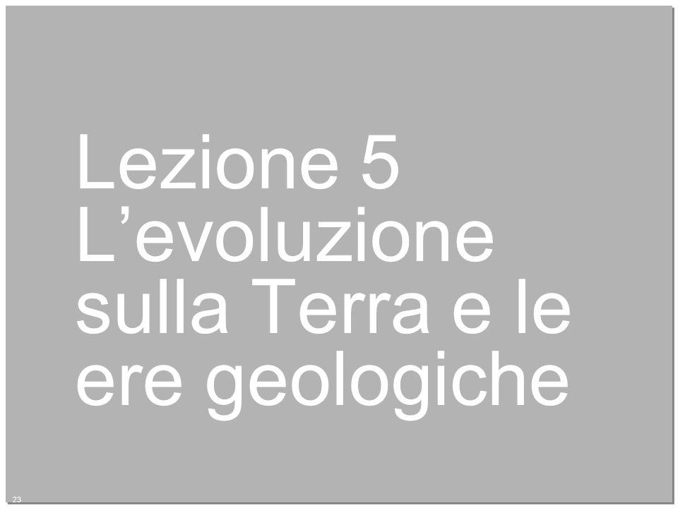 23 Lezione 5 L'evoluzione sulla Terra e le ere geologiche 23