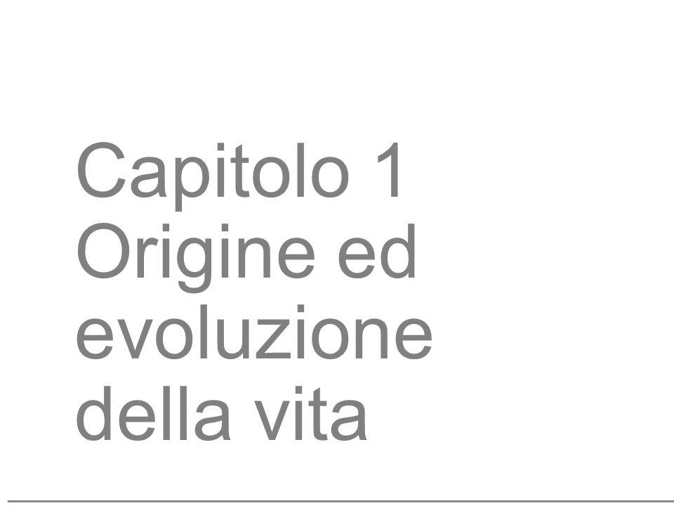 3 Capitolo 1 Origine ed evoluzione della vita