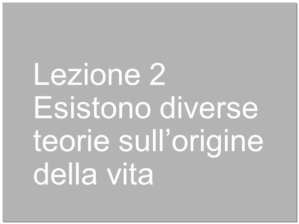 18 Curtis et al Introduzione alla biologia.azzurro © Zanichelli editore 2015 Gli organismi eterotrofi.