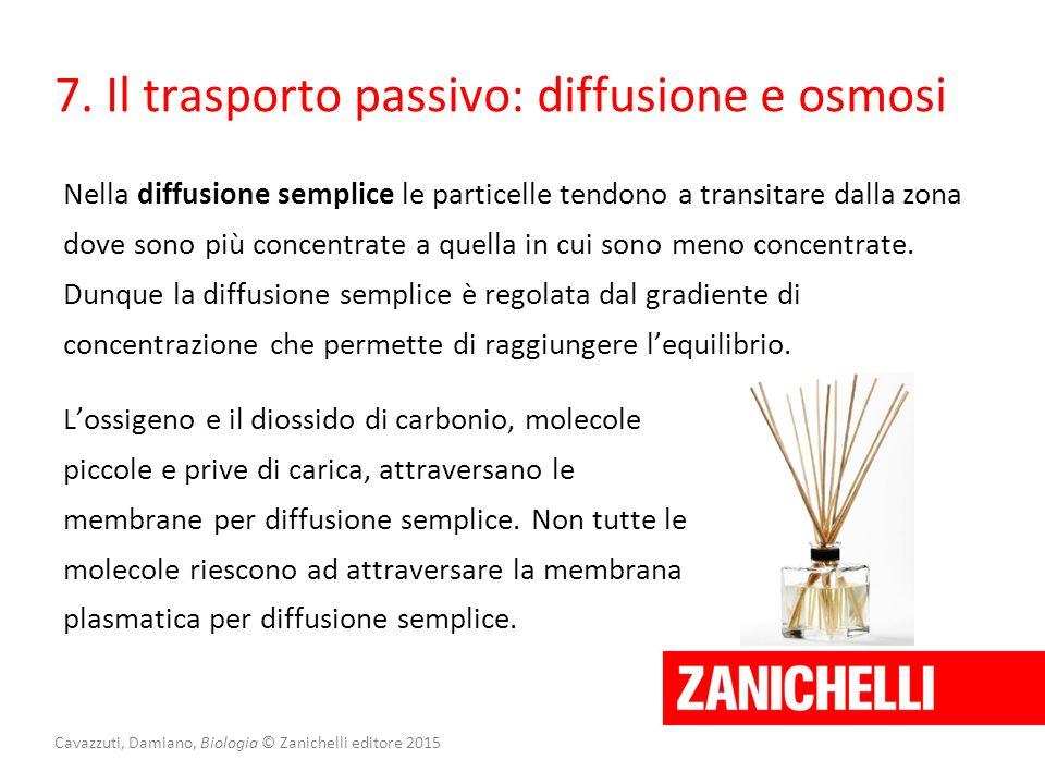 Cavazzuti, Damiano, Biologia © Zanichelli editore 2015 7. Il trasporto passivo: diffusione e osmosi Nella diffusione semplice le particelle tendono a