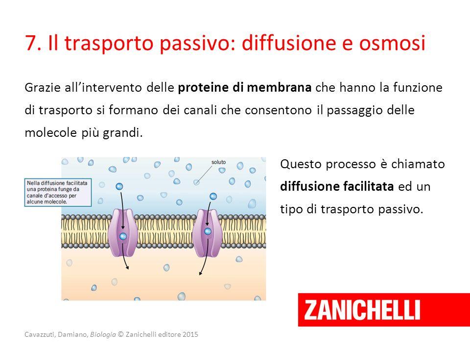 Cavazzuti, Damiano, Biologia © Zanichelli editore 2015 7. Il trasporto passivo: diffusione e osmosi Grazie all'intervento delle proteine di membrana c