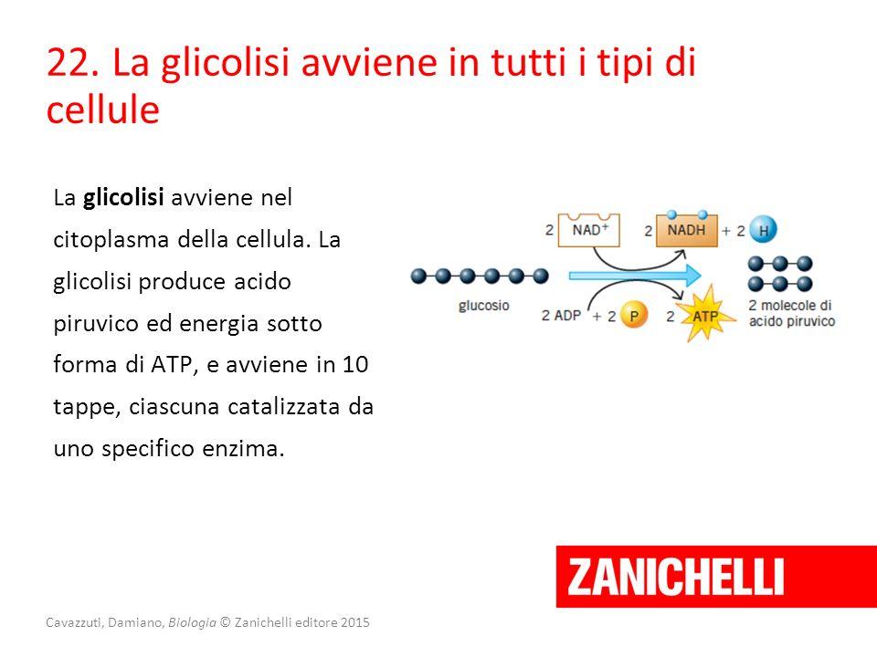 Cavazzuti, Damiano, Biologia © Zanichelli editore 2015 22. La glicolisi avviene in tutti i tipi di cellule La glicolisi avviene nel citoplasma della c