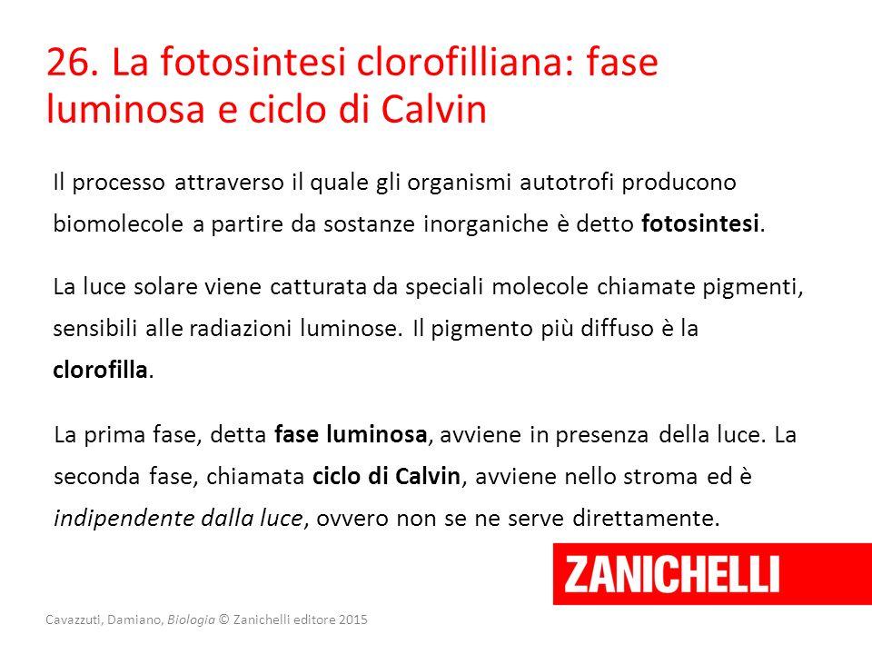Cavazzuti, Damiano, Biologia © Zanichelli editore 2015 26. La fotosintesi clorofilliana: fase luminosa e ciclo di Calvin Il processo attraverso il qua