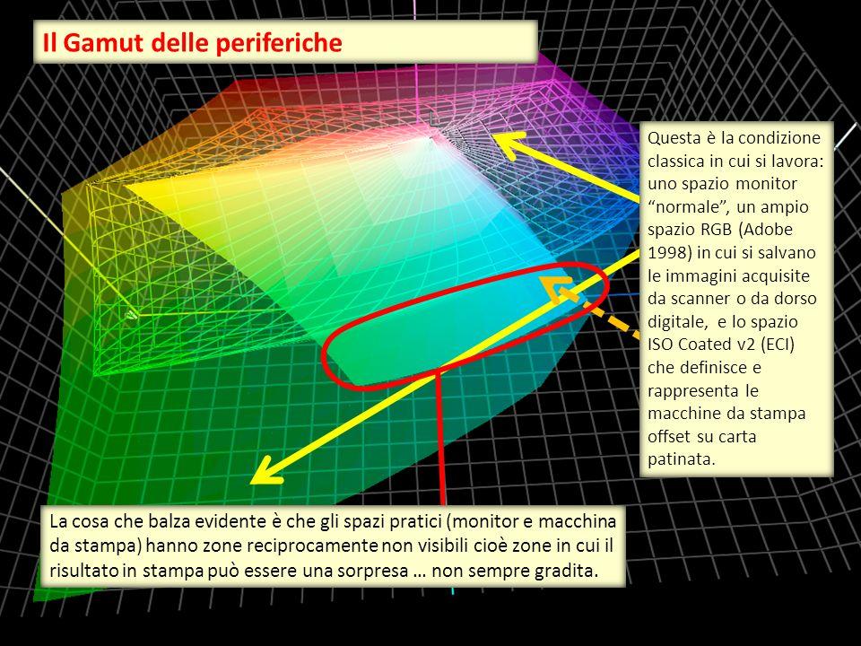 Questa è la condizione classica in cui si lavora: uno spazio monitor normale , un ampio spazio RGB (Adobe 1998) in cui si salvano le immagini acquisite da scanner o da dorso digitale, e lo spazio ISO Coated v2 (ECI) che definisce e rappresenta le macchine da stampa offset su carta patinata.