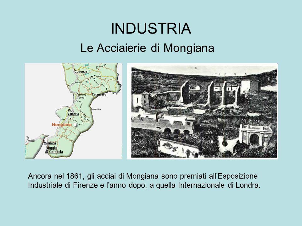 INDUSTRIA Le Acciaierie di Mongiana Ancora nel 1861, gli acciai di Mongiana sono premiati all'Esposizione Industriale di Firenze e l'anno dopo, a quel