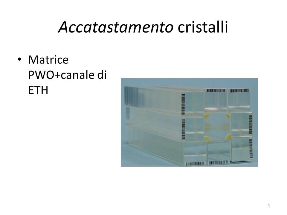 3) test-beam Fermilab Twiki: https://twiki.cern.ch/twiki/bin/view/CMS/Forwar dCalorimetryBeamTests https://twiki.cern.ch/twiki/bin/view/CMS/Forwar dCalorimetryBeamTests Date: primo periodo dal 14 marzo per 3-4 settimane Scopo: testare modulo shashlik, Pflow calorimeter, dual readout calorimeter, crystal fiber calorimeter Impegno di Roma: partecipare al test-beam con shifter, partecipare alla presa dati, e analizzare i dati 5