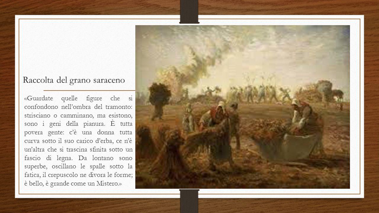Raccolta del grano saraceno «Guardate quelle figure che si confondono nell'ombra del tramonto: strisciano o camminano, ma esistono, sono i geni della pianura.