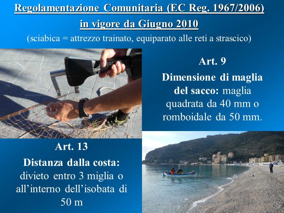 Art. 13 Distanza dalla costa: divieto entro 3 miglia o all'interno dell'isobata di 50 m Art. 9 Dimensione di maglia del sacco: maglia quadrata da 40 m