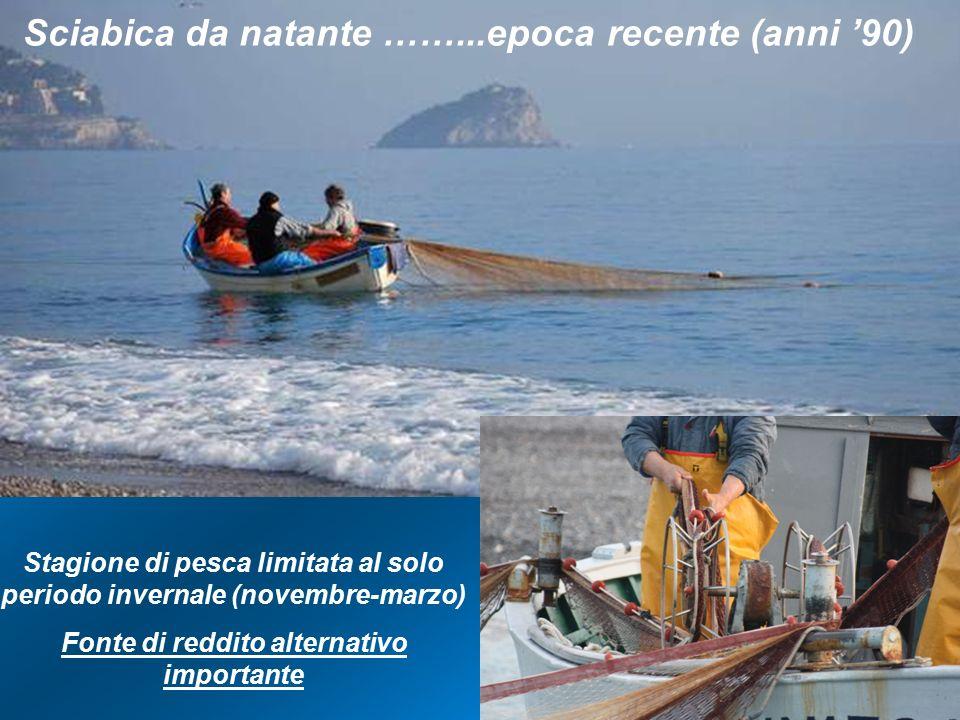 Stagione di pesca limitata al solo periodo invernale (novembre-marzo) Fonte di reddito alternativo importante Sciabica da natante ……...epoca recente (