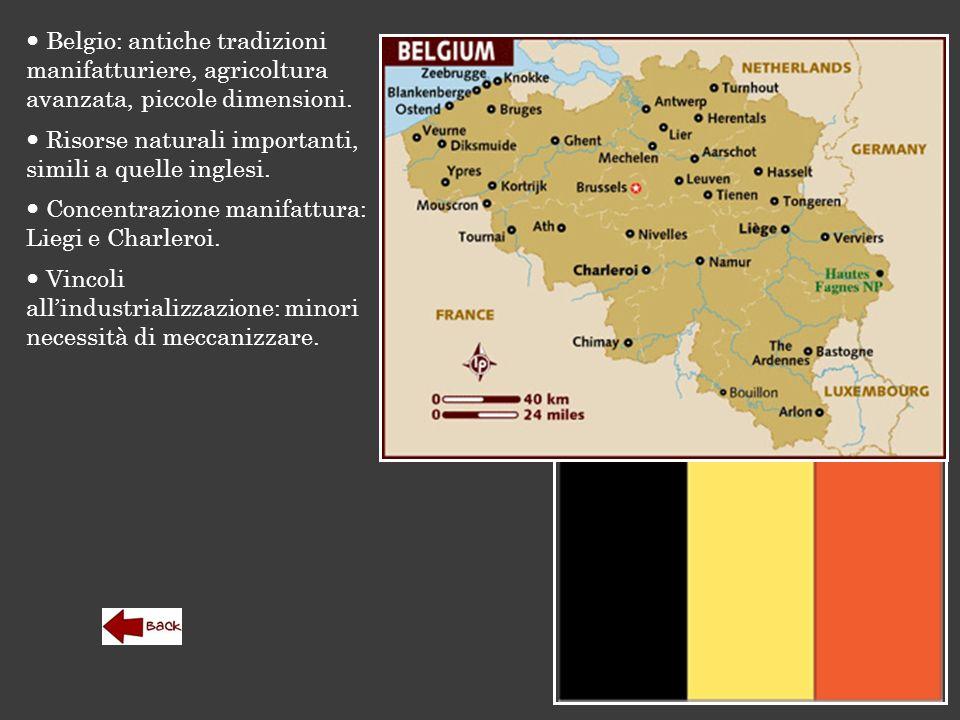 Belgio: antiche tradizioni manifatturiere, agricoltura avanzata, piccole dimensioni. Risorse naturali importanti, simili a quelle inglesi. Concentrazi