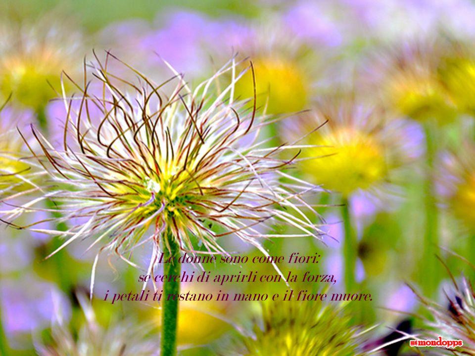 Le donne sono come fiori: se cerchi di aprirli con la forza, i petali ti restano in mano e il fiore muore.