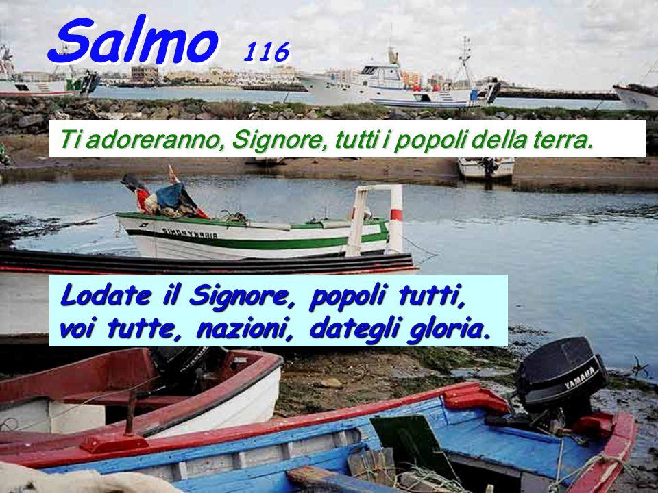Is 66,18-21 Cos ì dice il Signore: Io verrò a radunare tutti i popoli e tutte le lingue; essi verranno e vedranno la mia gloria.