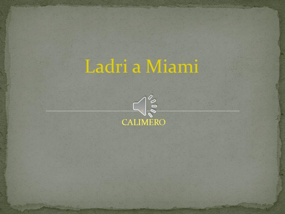 CALIMERO Ladri a Miami
