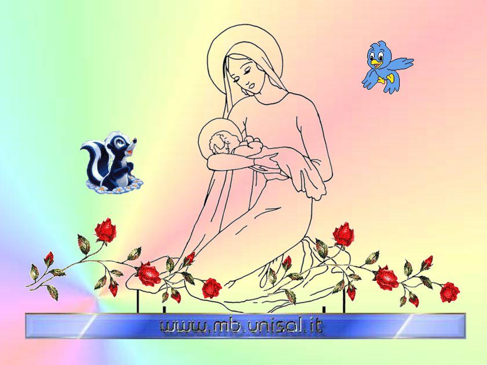 Maria, tu sei come la conchiglia che ha dentro di sé la perla, la perla più preziosa: Gesù. Per questo sei la più grande di tutte le donne. Sei grande