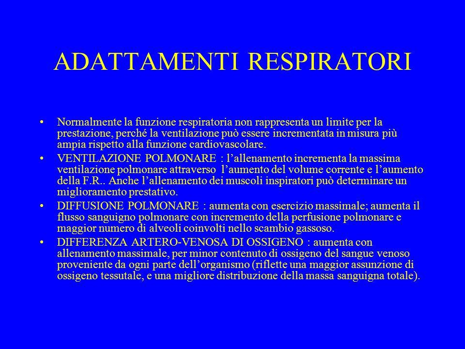 ADATTAMENTI RESPIRATORI Normalmente la funzione respiratoria non rappresenta un limite per la prestazione, perché la ventilazione può essere increment