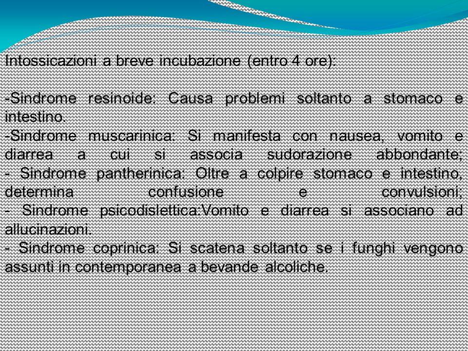 Intossicazioni a breve incubazione (entro 4 ore): - Sindrome resinoide: Causa problemi soltanto a stomaco e intestino. - Sindrome muscarinica: Si mani