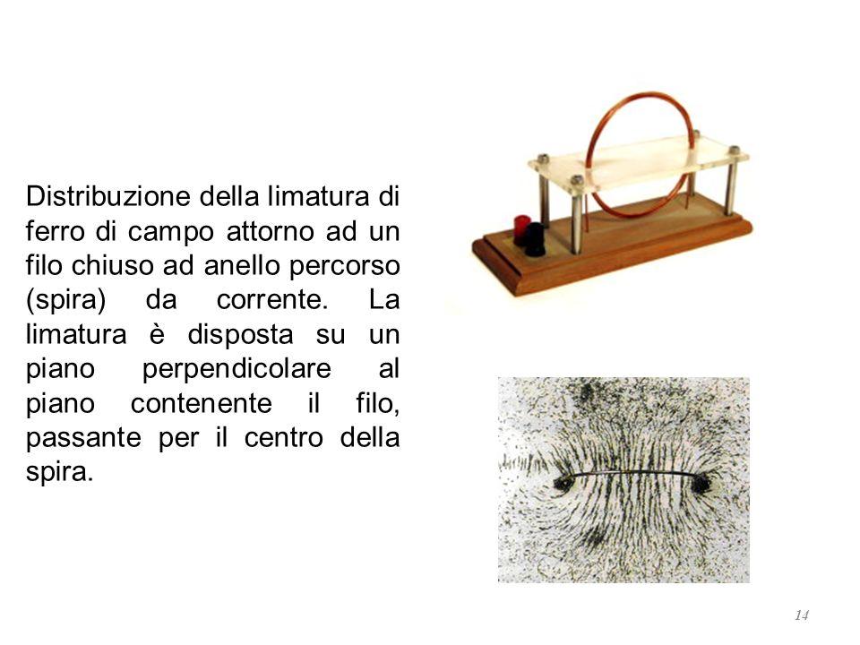14 Distribuzione della limatura di ferro di campo attorno ad un filo chiuso ad anello percorso (spira) da corrente. La limatura è disposta su un piano