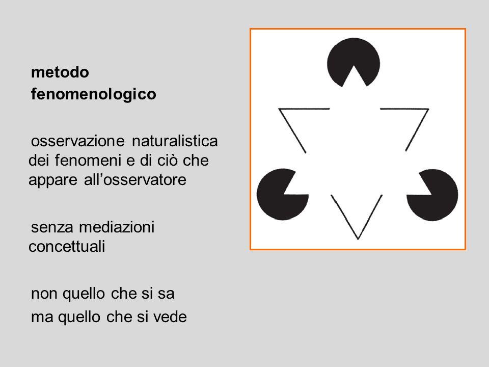 metodo fenomenologico osservazione naturalistica dei fenomeni e di ciò che appare all'osservatore senza mediazioni concettuali non quello che si sa ma