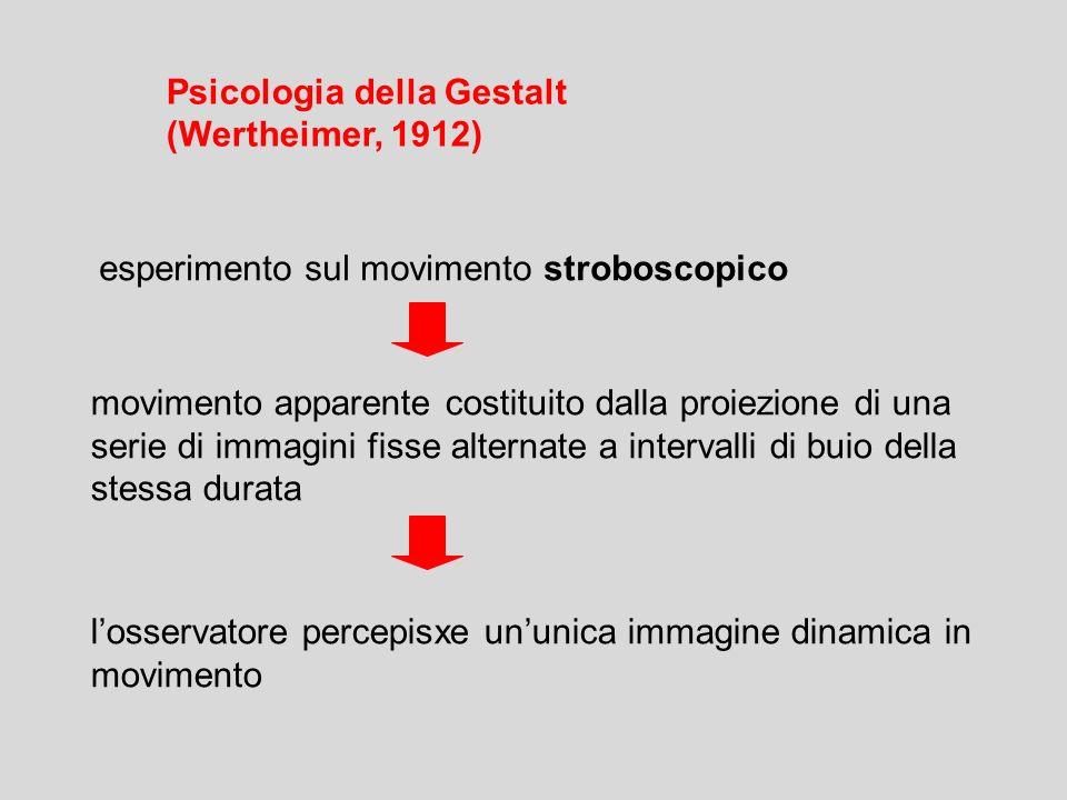 esperimento sul movimento stroboscopico movimento apparente costituito dalla proiezione di una serie di immagini fisse alternate a intervalli di buio