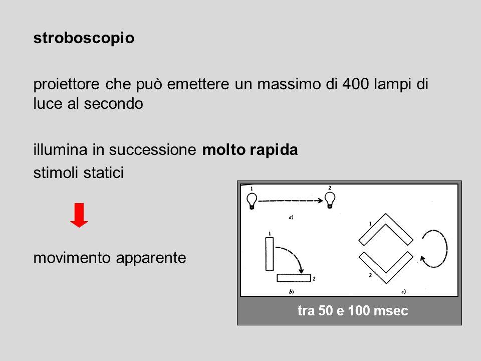 tra 50 e 100 msec movimento apparente stroboscopio proiettore che può emettere un massimo di 400 lampi di luce al secondo illumina in successione molt