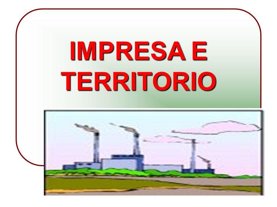 11 IMPRESA E TERRITORIO
