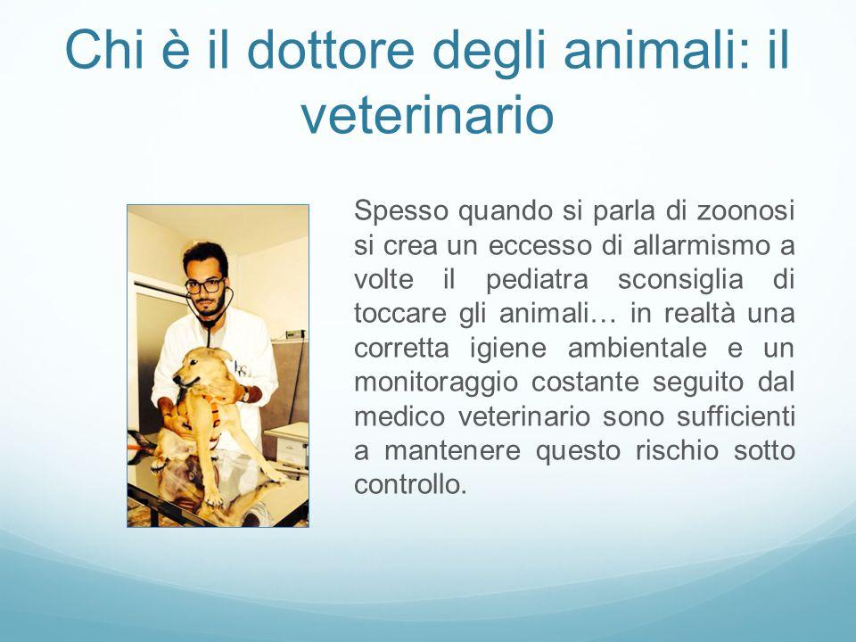 Chi è il dottore degli animali: il veterinario Spesso quando si parla di zoonosi si crea un eccesso di allarmismo a volte il pediatra sconsiglia di to