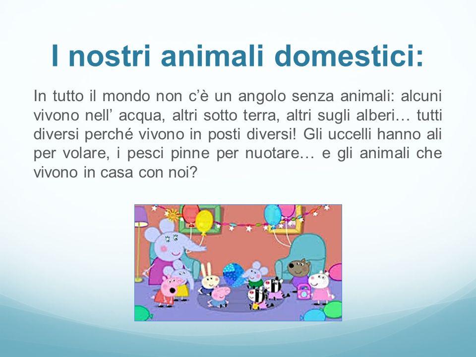 I nostri animali domestici: In tutto il mondo non c'è un angolo senza animali: alcuni vivono nell' acqua, altri sotto terra, altri sugli alberi… tutti