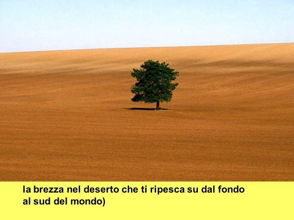 la brezza nel deserto che ti ripesca su dal fondo al sud del mondo)