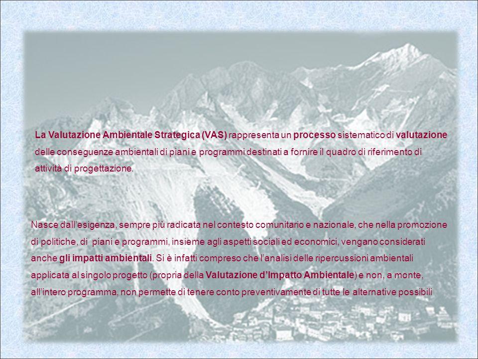 La Valutazione Ambientale Strategica (VAS) rappresenta un processo sistematico di valutazione delle conseguenze ambientali di piani e programmi destinati a fornire il quadro di riferimento di attività di progettazione.