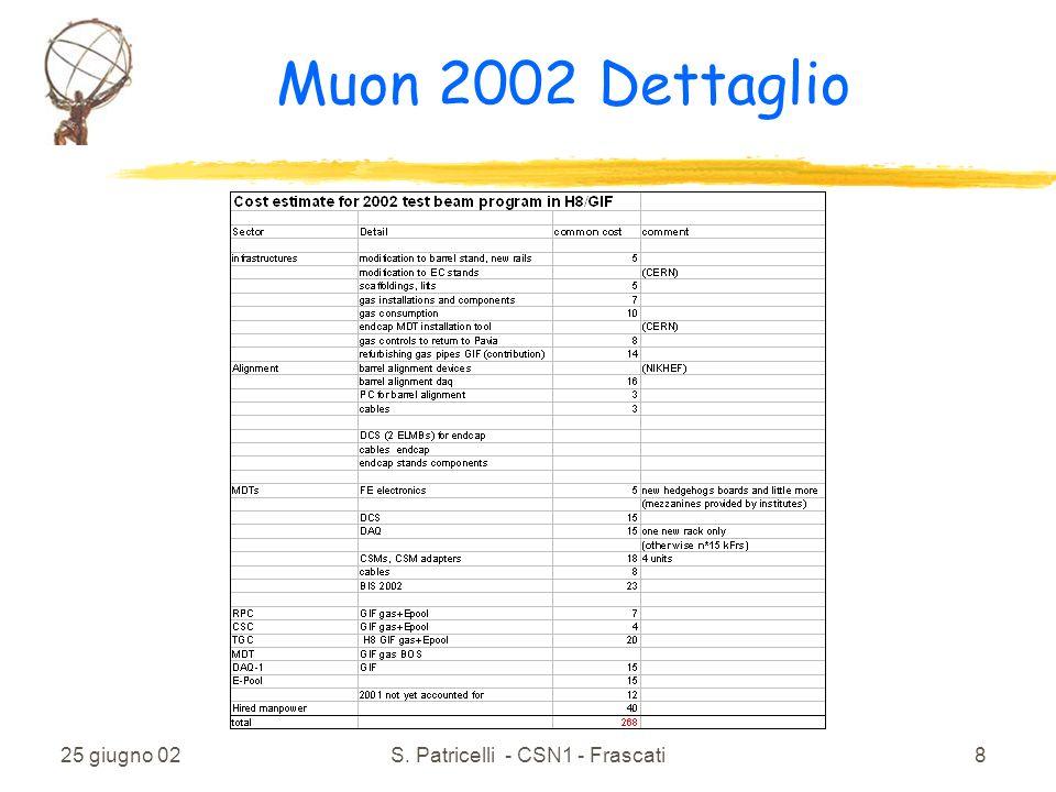 25 giugno 02S. Patricelli - CSN1 - Frascati8 Muon 2002 Dettaglio