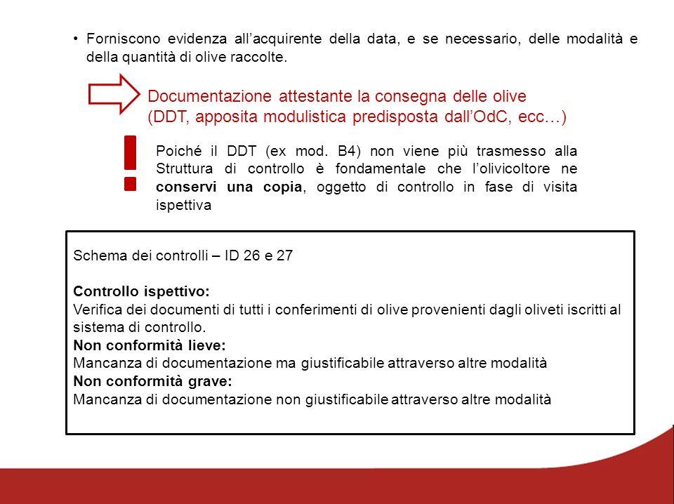 Forniscono evidenza all'acquirente della data, e se necessario, delle modalità e della quantità di olive raccolte. Documentazione attestante la conseg
