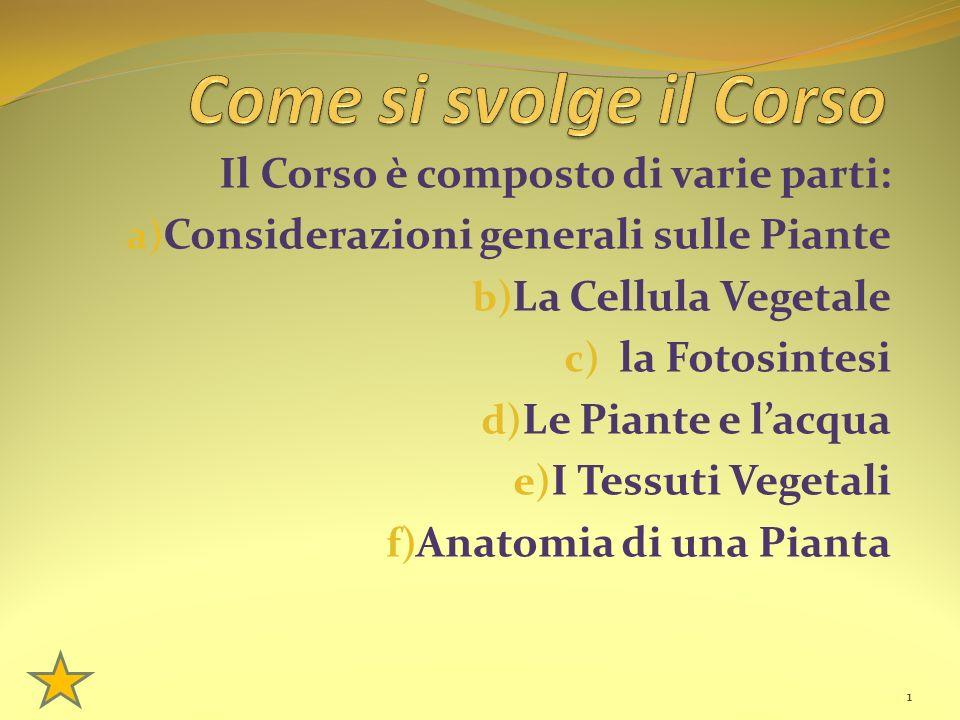 Il Corso è composto di varie parti: a) Considerazioni generali sulle Piante b) La Cellula Vegetale c) la Fotosintesi d) Le Piante e l'acqua e) I Tessuti Vegetali f) Anatomia di una Pianta 1
