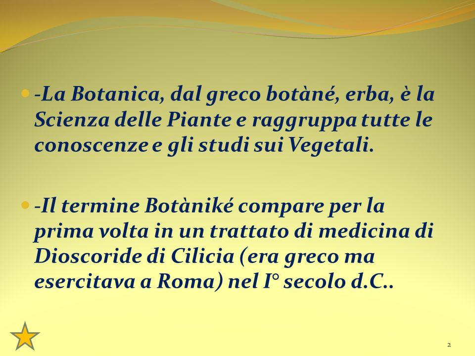 -La Botanica, dal greco botàné, erba, è la Scienza delle Piante e raggruppa tutte le conoscenze e gli studi sui Vegetali. -Il termine Botàniké compare